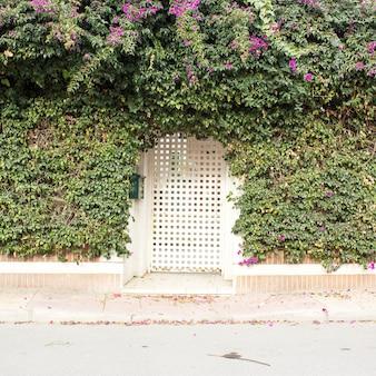 Fundo de vista frontal de cerca de jardim