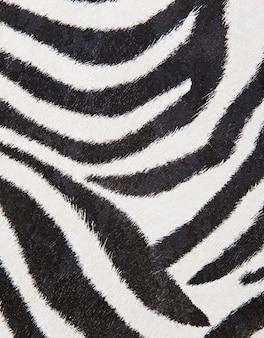 Fundo de zebra