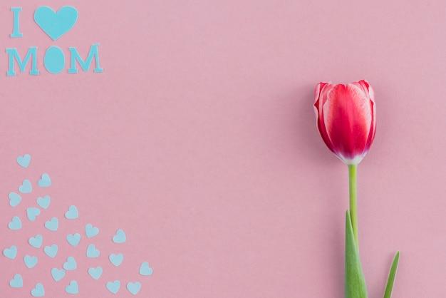 Fundo decorativo com tulip e papel azul corações para o dia da mãe