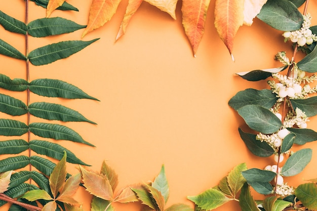 Fundo decorativo de outono. composição de bagas de folhas de outono.