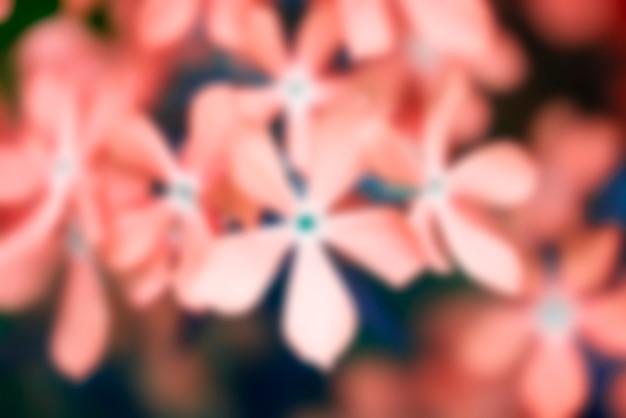 Fundo desfocado borrado com flores