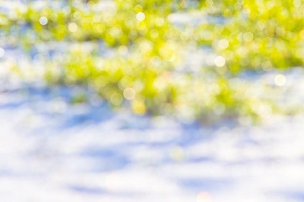 Fundo desfocado de neve e grama. plano de fundo para design_