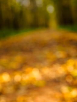 Fundo desfocado do caminho de outono no parque