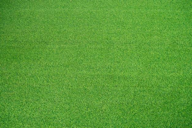 Fundo do campo de grama. grama verde. fundo verde