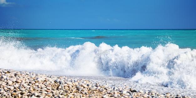 Fundo do mar. espanha. costa blanca.