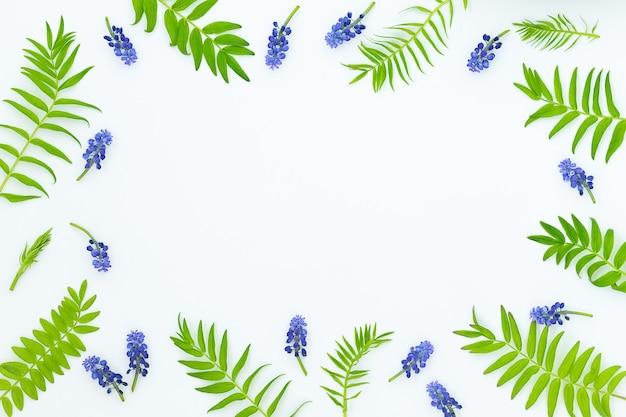 Fundo do quadro com folhas verdes e flores azuis