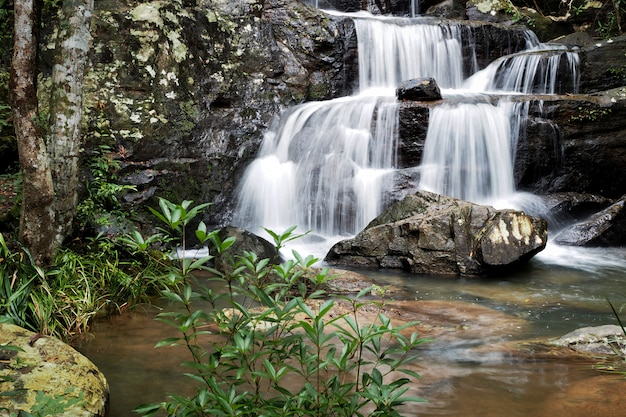 Fundo do rio da montanha com as cachoeiras pequenas na floresta tropical.