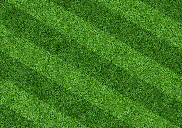 Fundo do teste padrão do campo de grama verde para o futebol e o futebol.