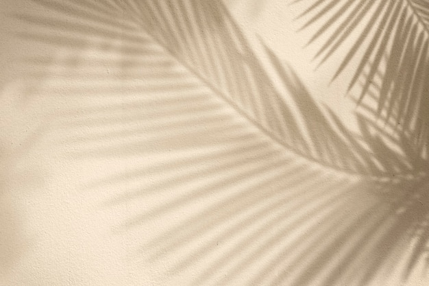 Fundo dourado com palmeira