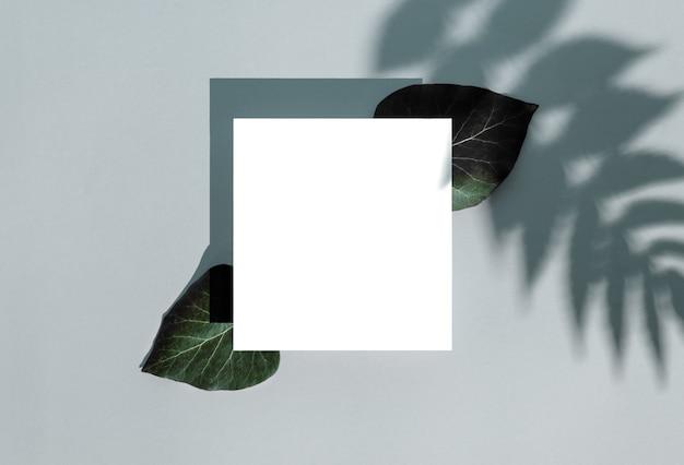 Fundo elegante com cartão de papel quadrado com folhas verdes sobre fundo azul suave pastel.