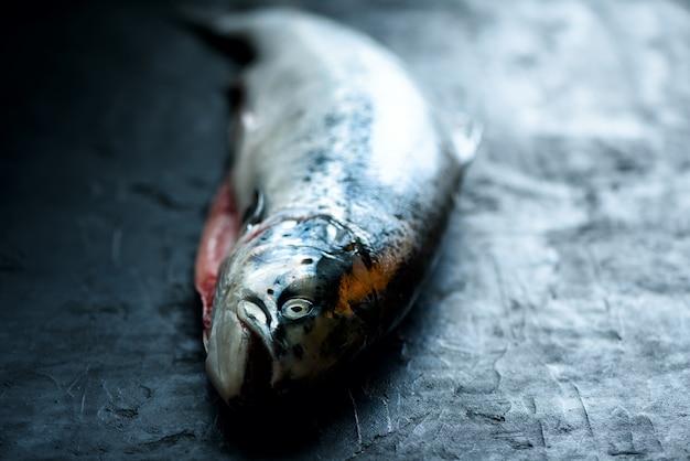 Fundo escuro do concreto dos peixes salmon frescos - o concreto concreto preparou-se arquivando. copie o espaço, vista superior