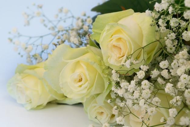Fundo floral abstrato é borrado de foco suave seletivo de rosas