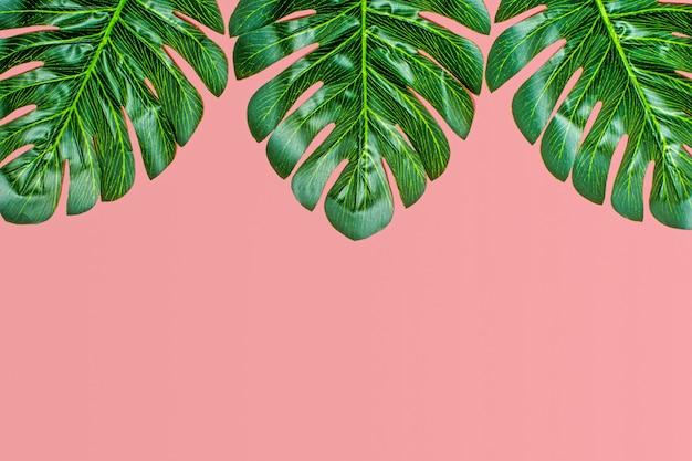 Fundo floral bonito da palmeira tropical deixa no fundo rosa flat lay