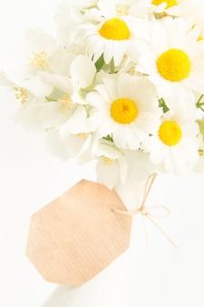 Fundo floral com margaridas.