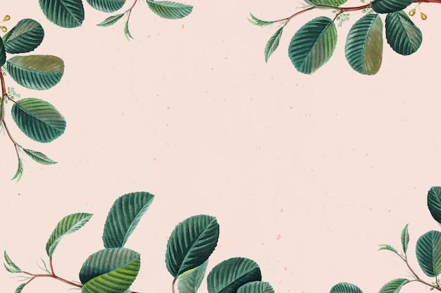 Fundo floral com moldura de folha verde