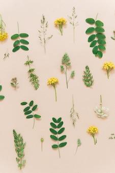 Fundo floral com plantas e flores padrão natural