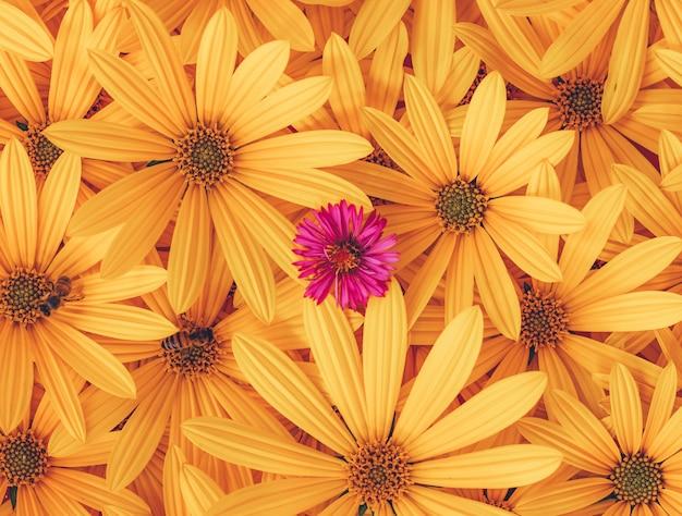 Fundo floral de flores de alcachofra de jerusalém