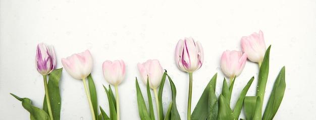 Fundo floral primavera com espaço de cópia