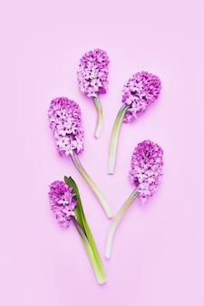 Fundo floral rosa hyainths em fundo rosa comemoração do aniversário do dia dos namorados do dia das mães