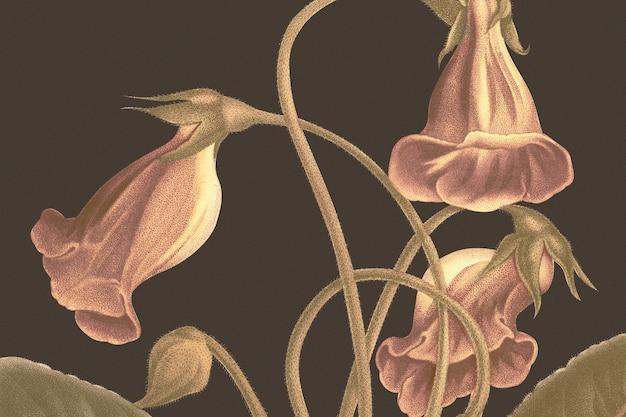 Fundo floral vintage com ilustração de flor de gloxinia, remixado de obras de arte de domínio público