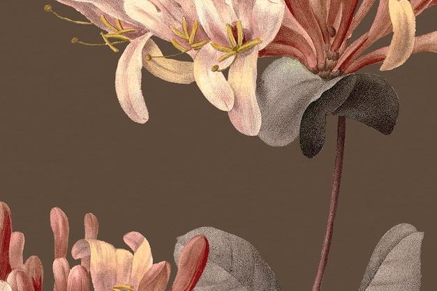 Fundo floral vintage com ilustração de flores de madressilva, remixado de obras de arte de domínio público