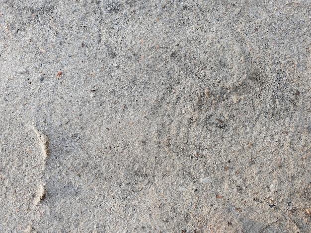 Fundo horizontal de areia de floresta natural