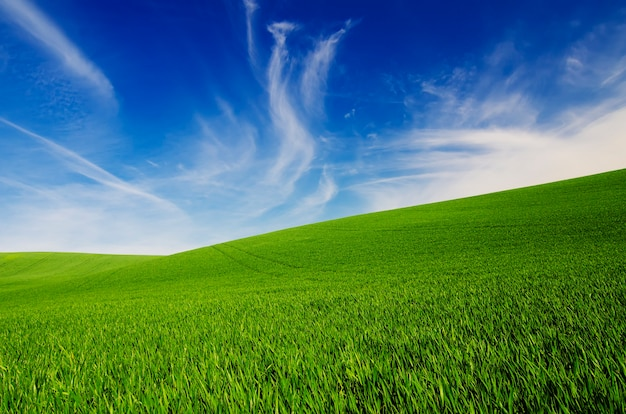 Fundo idílico natural abstrato com grama verde e céu azul nublado