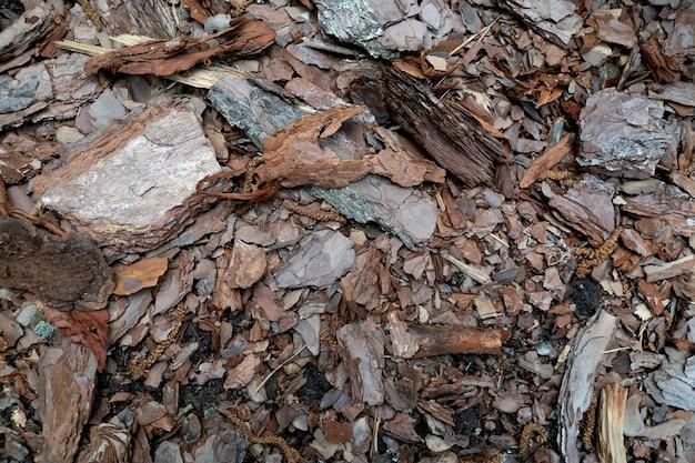 Fundo marrom de pedaços de casca de madeira e lascas de madeira