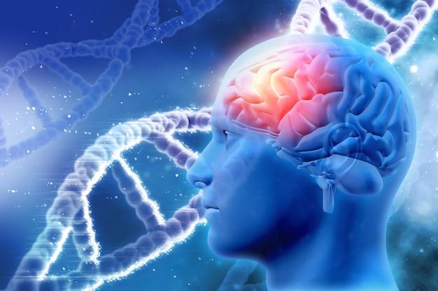 Fundo médico 3d com cabeça masculina com cérebro e as costas do adn