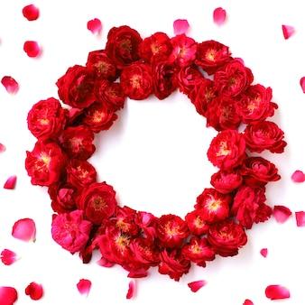 Fundo multiuso de rosa vermelha
