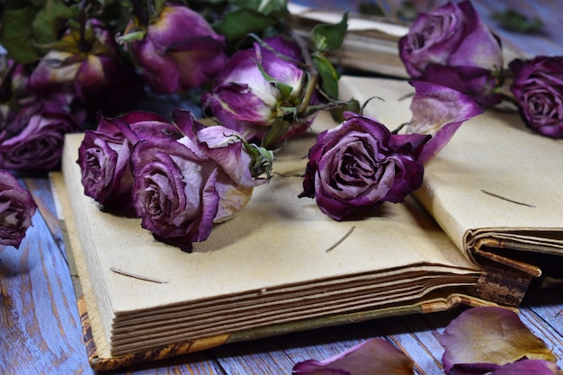 Fundo nostálgico humor vintage. botões de rosa roxos decorativos secos e cartas antigas.