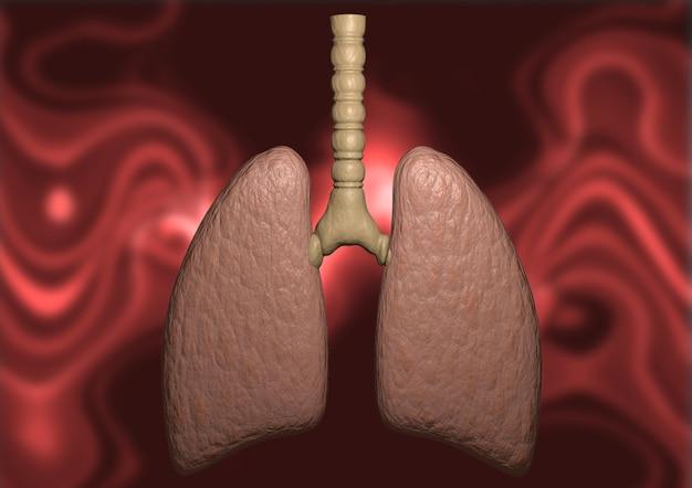 Fundo orgânico de pulmão