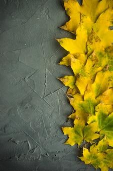 Fundo outonal com folhas amarelas