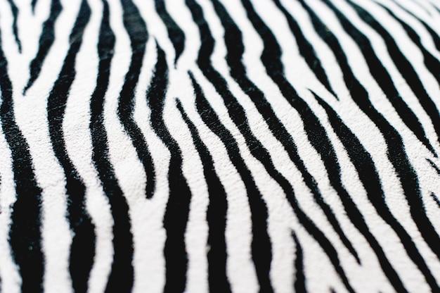 Fundo preto e branco de zebra