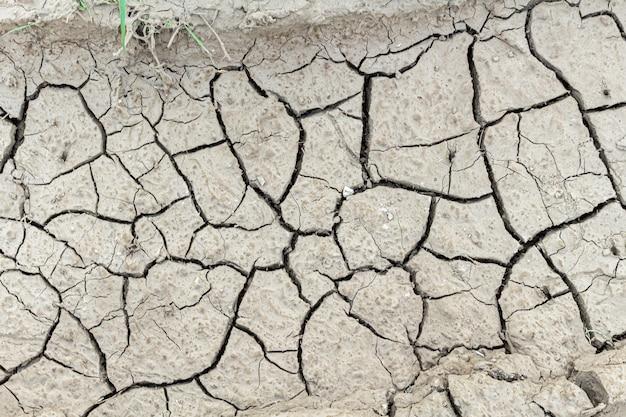 Fundo rachado da textura da terra secada, fim acima.