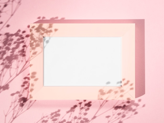 Fundo rosa com uma moldura rosa e sombras de galhos