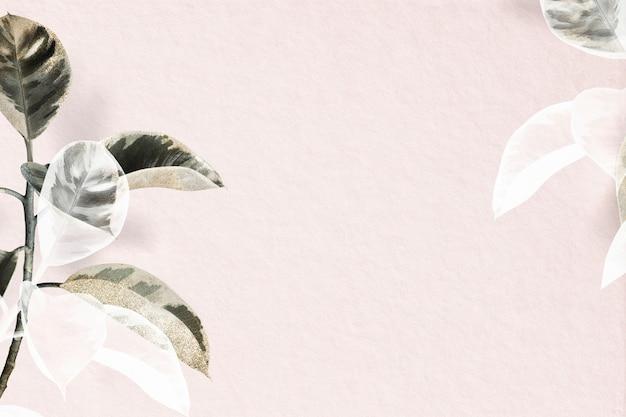 Fundo rosa de planta de borracha indiana