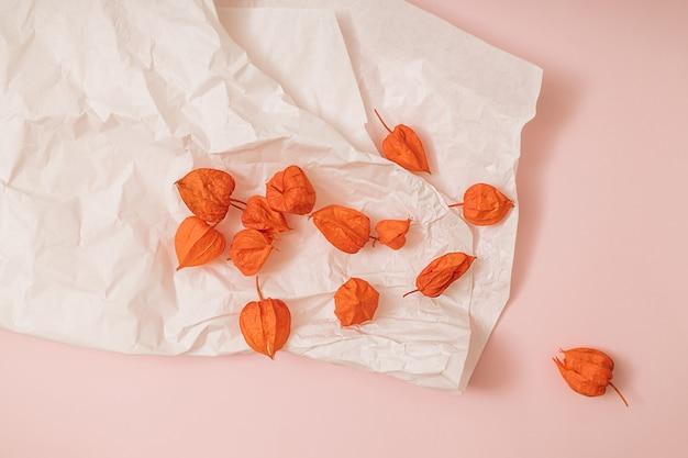 Fundo rosa e branco iluminado pelo sol do outono com physalis, frutas da estação. colheita plana leiga ou conceito de halloween. layout criativo de vegetais coloridos. copie o espaço.