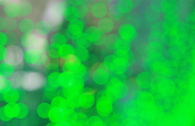 Fundo verde abstrato da luz do bokeh.