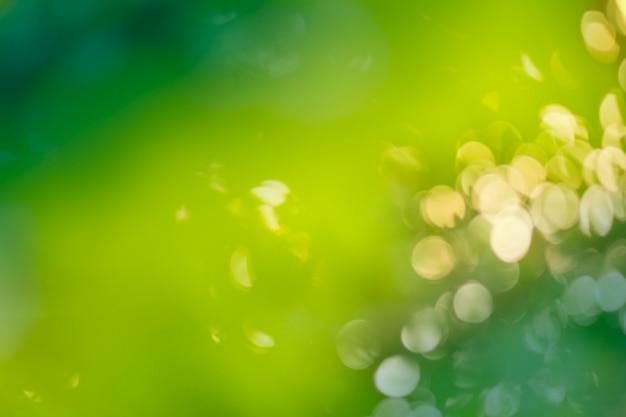 Fundo verde bokeh