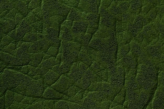 Fundo verde escuro de couro artificial com textura e padrão, closeup