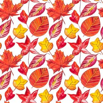 Fundo vermelho e laranja de folhas de outono. ilustração em aquarela padrão sem emenda.
