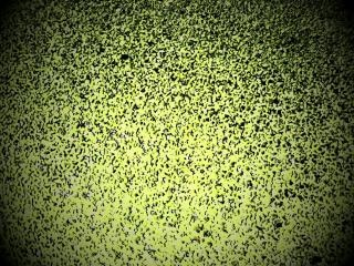 Fundo vinheta verde salpicado
