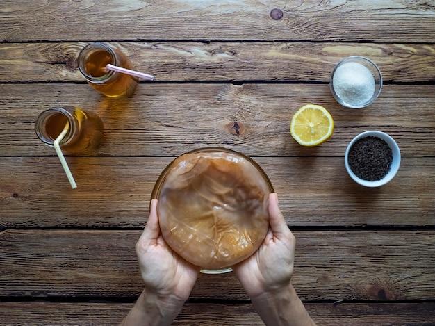 Fungo de kombucha. bebida de chá fermentado orgânico.