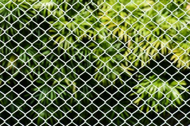 Gaiola branca metal net frente a palmeira no parque