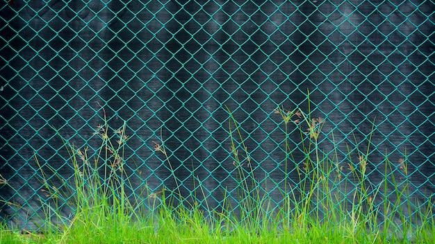 Gaiola de metal verde frente de arame uma lona preta