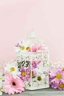 Gaiola de pássaro com flores e parede rosa