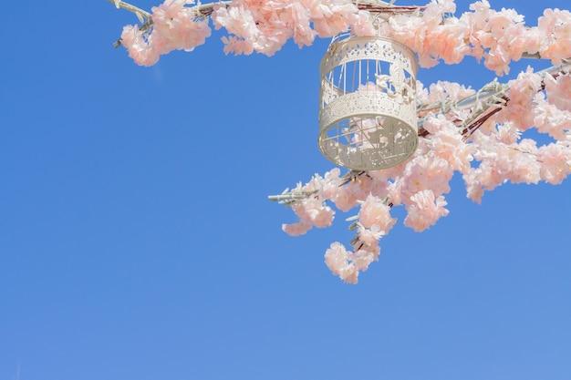 Gaiola de pássaro decorativa branca pendurada no galho da macieira florescendo no fundo do céu.