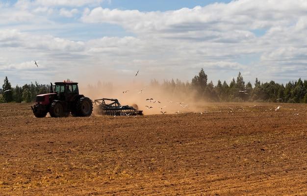 Gaivotas brancas sentadas na terra arada e voando atrás do arado com o trator durante a aração do solo no campo