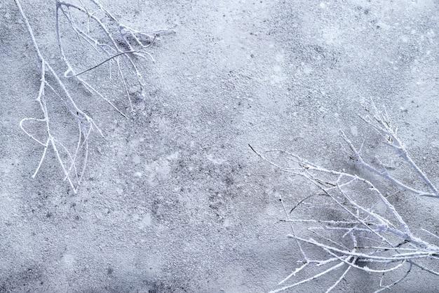 Galho de árvore branca seca no fundo de pedra
